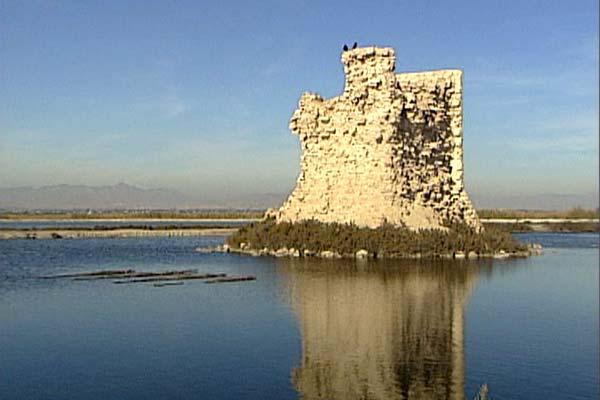 Excursión a la Isla de Tabarca en Alicante.